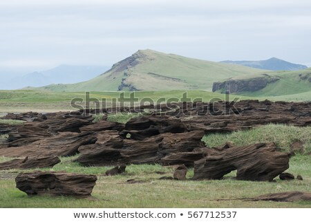 Icelandic landscape with muted colors and abstract rocks Stock photo © Kotenko