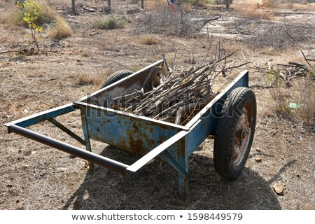 farm worker with tray of shoots Stock photo © IS2