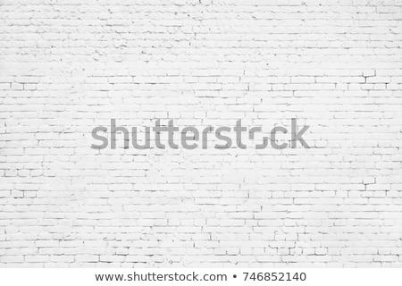 Идея белый бизнеса образование кирпичная стена Сток-фото © tashatuvango