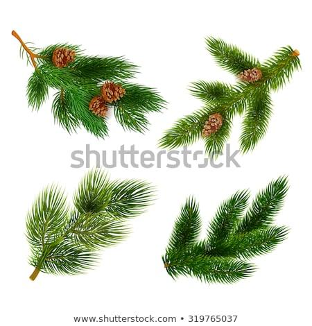 Chrismas tree in sphere Stock photo © milsiart