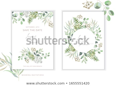 vector spring background illustration. round frame with green ci Stock photo © freesoulproduction
