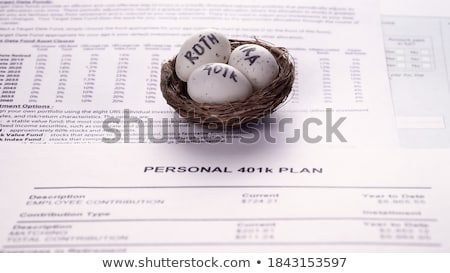 Close-up Of 401k White Egg Stock photo © AndreyPopov