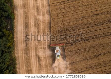 Stockfoto: Luchtfoto · agrarisch · machine · verzamelen · hooi · veld