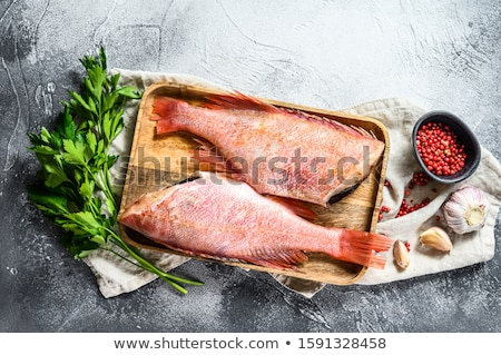 raw ocean perch Stock photo © tycoon
