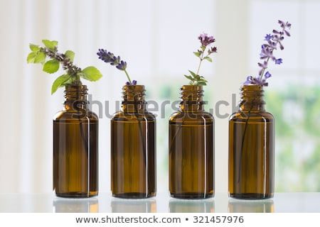 bottles of essential oil with roses peppermint lavender and other herbs and flowers stock photo © madeleine_steinbach