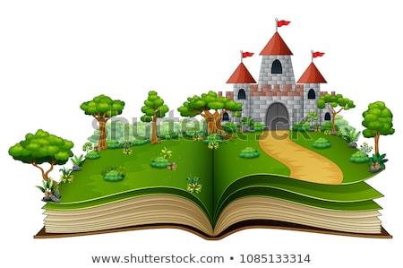 Rycerz princess pałac ilustracja krajobraz tle Zdjęcia stock © colematt