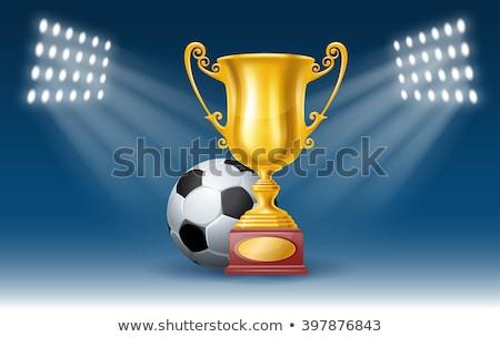 Futball díj vektor futball labda arany Stock fotó © pikepicture