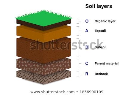 Diagrama diferente capas suelo ilustración Foto stock © bluering