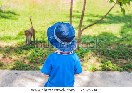 Fiú külső majom sziget Vietnam város Stock fotó © galitskaya