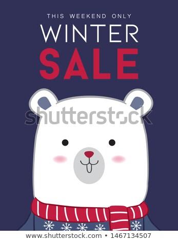 Artico poster inverno vendita sconto vettore Foto d'archivio © robuart