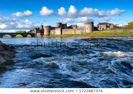 Király kastély Írország folyó kő ősz Stock fotó © borisb17