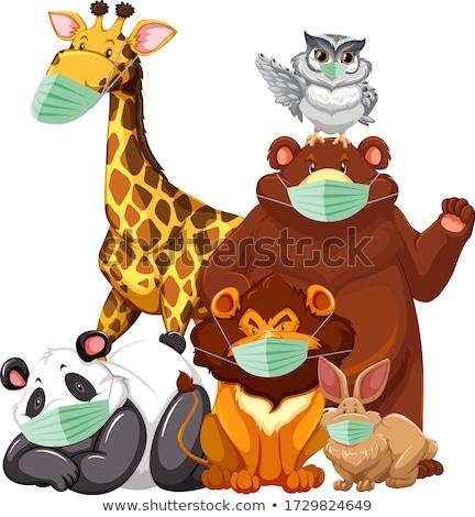 野生動物 着用 マスク 実例 背景 芸術 ストックフォト © bluering