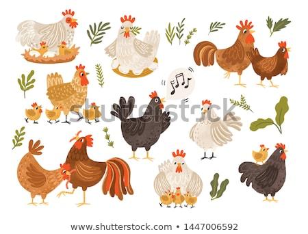 Sevimli tavuk civciv karikatür aile bebek Stok fotoğraf © yupiramos