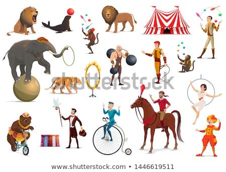 Művész cirkusz aréna férfi zsonglőrködés színpad Stock fotó © jossdiim