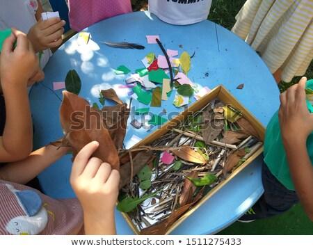 Rovar tevékenység természet illusztráció virág család Stock fotó © bluering