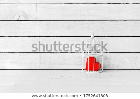 Heart in Cage Stock photo © xochicalco