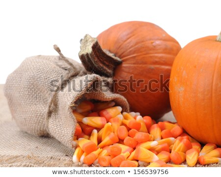 halloween trick or treat burlap stock photo © saje