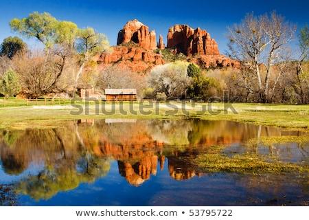 Katedrális kő kanyon tölgy patak tükröződés Stock fotó © billperry