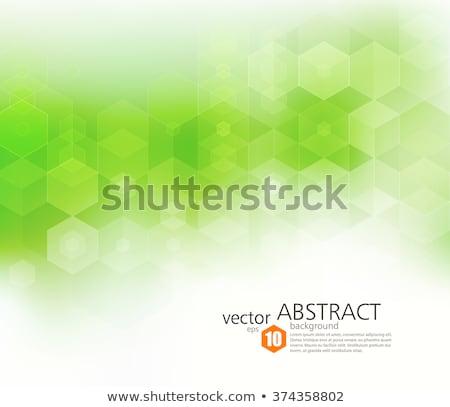 ecological conceptual background Stock photo © Grazvydas