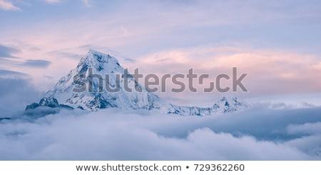 Hegyek felhők sűrű tűlevelű erdő égbolt Stock fotó © rozbyshaka