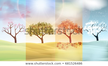 Four seasons banners, vector illustration  Stock photo © carodi