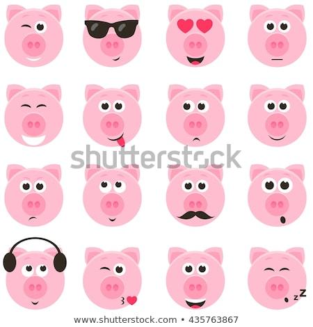 Head of a pig sleeping Stock photo © Arrxxx