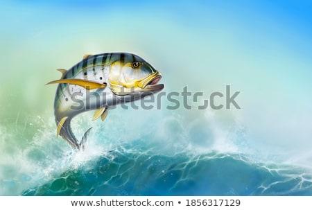 Altın yüzme akvaryum balık deniz okyanus Stok fotoğraf © Lynx_aqua