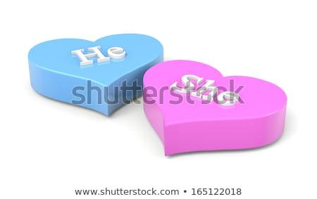 Couple of Hearts He She English Text Stock photo © make