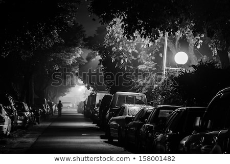 night view of narrow street in small town stock photo © rglinsky77