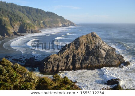 West Coast Oregon Overlook Sea Shore Pacific Ocean Northwest USA Stock photo © cboswell