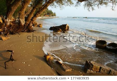erózió · hullám · hatás · klímaváltozás · vízpart · globális - stock fotó © xuanhuongho