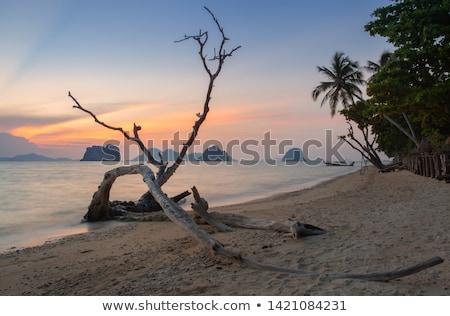 закат пляж острове Таиланд солнце Сток-фото © jeancliclac