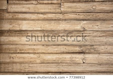 Old Wooden Plank Door Foto d'archivio © bogumil