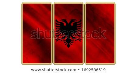 Praça metal botão bandeira Albânia isolado Foto stock © MikhailMishchenko