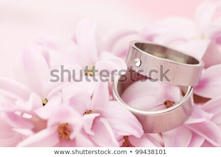 Platinum engagement and wedding ringson on fabric Stock photo © sfinks