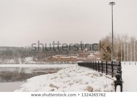 inverno · árvores · árvore · madeira · pôr · do · sol · paisagem - foto stock © paha_l