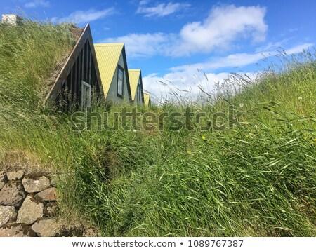 古い · 家 · 草 · 屋根 · 美しい · 木製 - ストックフォト © hofmeester