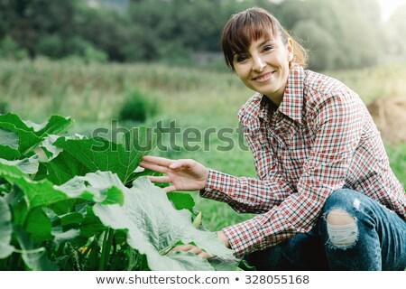 schoonheid · portret · glimlachend · aantrekkelijk · half · naakt - stockfoto © deandrobot