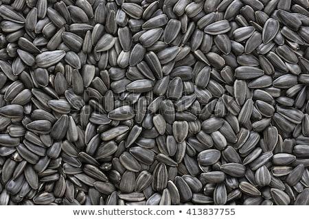 黒 · ヒマワリ · 種子 · 製造 · ひまわり油 · 花 - ストックフォト © mayboro1964