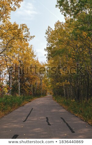 Northern Manitoba road in autumn Stock photo © pictureguy