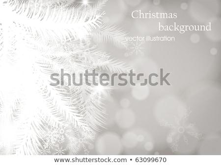 Weihnachtsbaum Zweig blau eps 10 Vektor Stock foto © beholdereye
