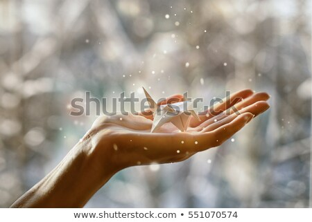 Fabulous paper crane in your hand Stock photo © vasilixa