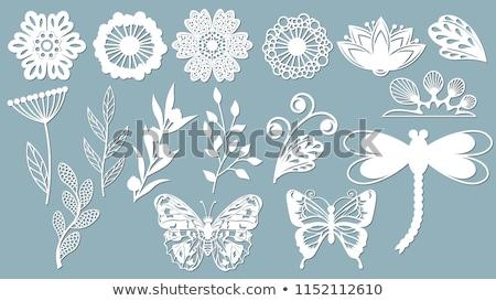 Matrica terv levelek rovarok illusztráció pillangó Stock fotó © bluering