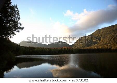 озеро устрашающий воды лес осень цвета Сток-фото © pictureguy