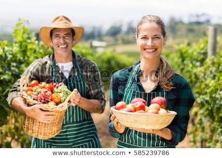 Vrouw vruchten schort buitenshuis schoonheid Stockfoto © IS2