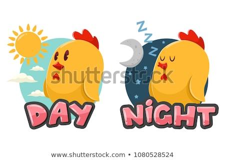 Naprzeciwko słowa dzień noc ilustracja chmury Zdjęcia stock © bluering