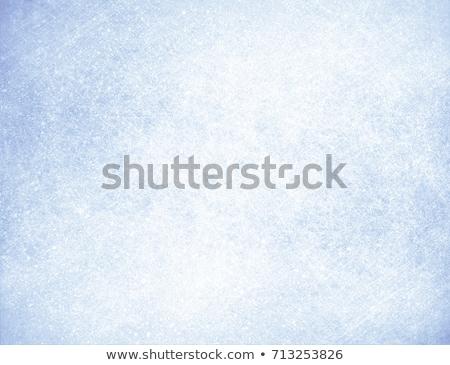 Fagy lomb hely fény keret jég Stock fotó © milsiart
