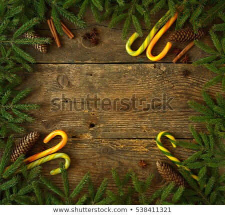 Christmas tree branch with cones, cinnamon, dittany and candy ca Stock photo © vlad_star