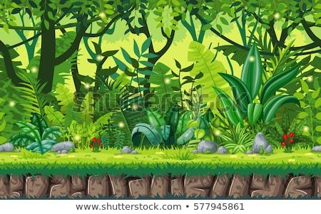 シームレス ジャングル 漫画 草 自然 ストックフォト © cthoman