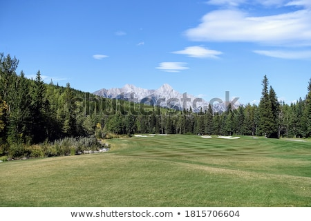 golf course surrounded by forest stock photo © raywoo